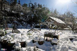 Cảnh tượng băng tuyết phủ trắng các cành cây, ngọn cỏ sẽ là những kỉ niệm khó quên đối với bạn.