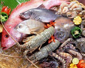Hải sản là một trong những đặc trưng của Nha Trang