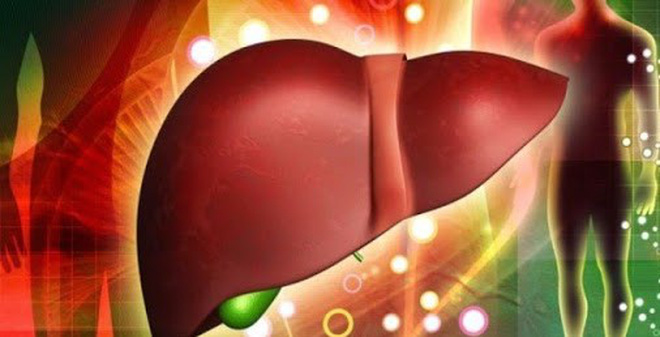 Các loại trà thảo dược có tác dụng hiệu quả trong việc cải thiện chức năng gan