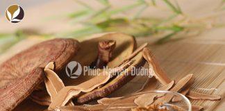 Cách sử dụng nấm linh chi hiệu quả nhất?