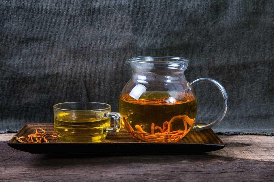 Hãm trà với đông trùng hạ thảo