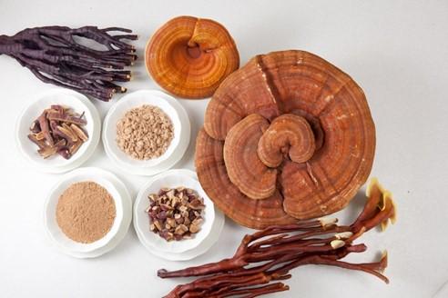 Hướng dẫn cách sử dụng nấm linh chi giữ lượng dinh dưỡng tối đa