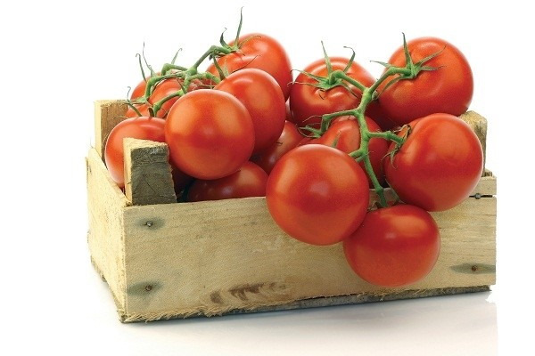 Có nên bảo quản cà chua trong ngăn đá tủ lạnh?